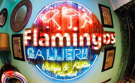 Flamingos Gallery