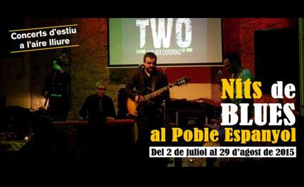 Nits de Blues - Poble Espanyol