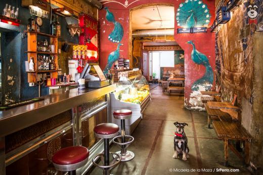 Le bar Oviso